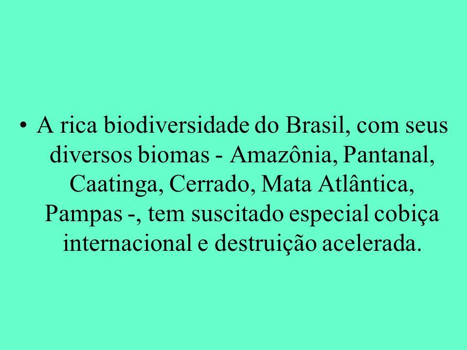 A rica biodiversidade do Brasil, com seus diversos biomas - Amazônia, Pantanal, Caatinga, Cerrado, Mata Atlântica, Pampas -, tem suscitado especial cobiça internacional e destruição acelerada.