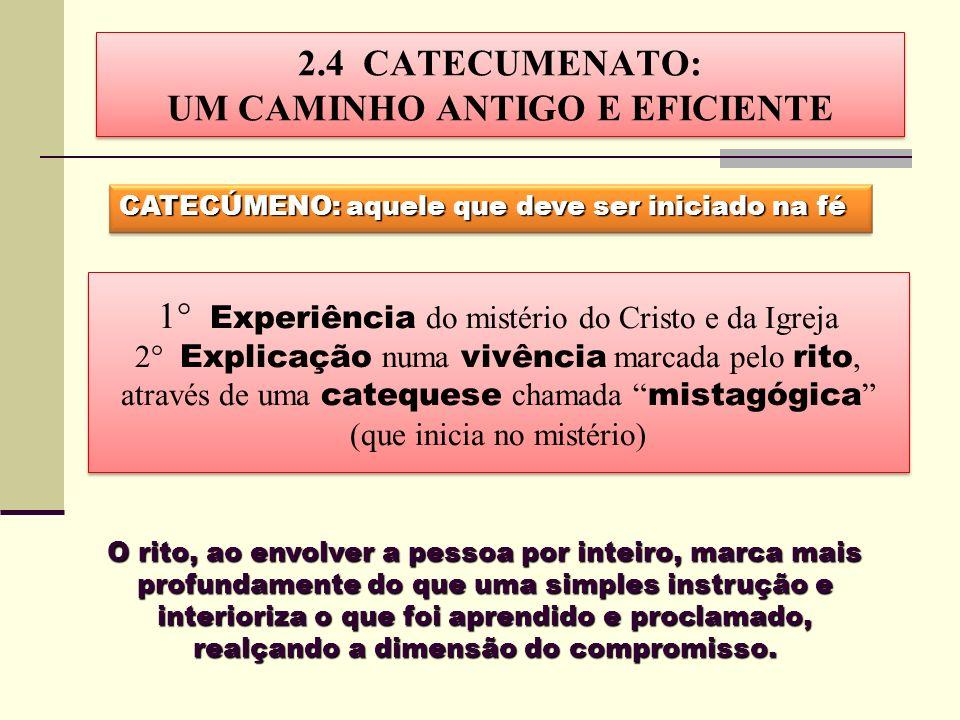 2.4 CATECUMENATO: UM CAMINHO ANTIGO E EFICIENTE