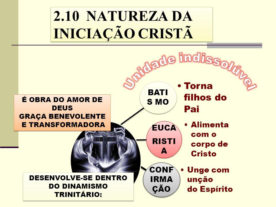 2.10 NATUREZA DA INICIAÇÃO CRISTÃ