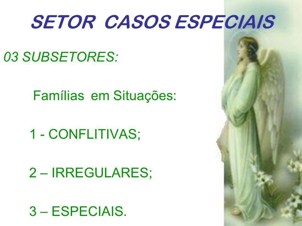 SETOR CASOS ESPECIAIS 03 SUBSETORES: Famílias em Situações: