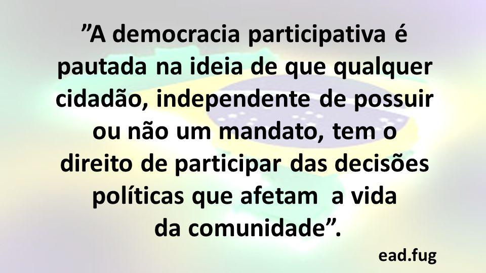 A democracia participativa é pautada na ideia de que qualquer cidadão, independente de possuir ou não um mandato, tem o direito de participar das decisões políticas que afetam a vida