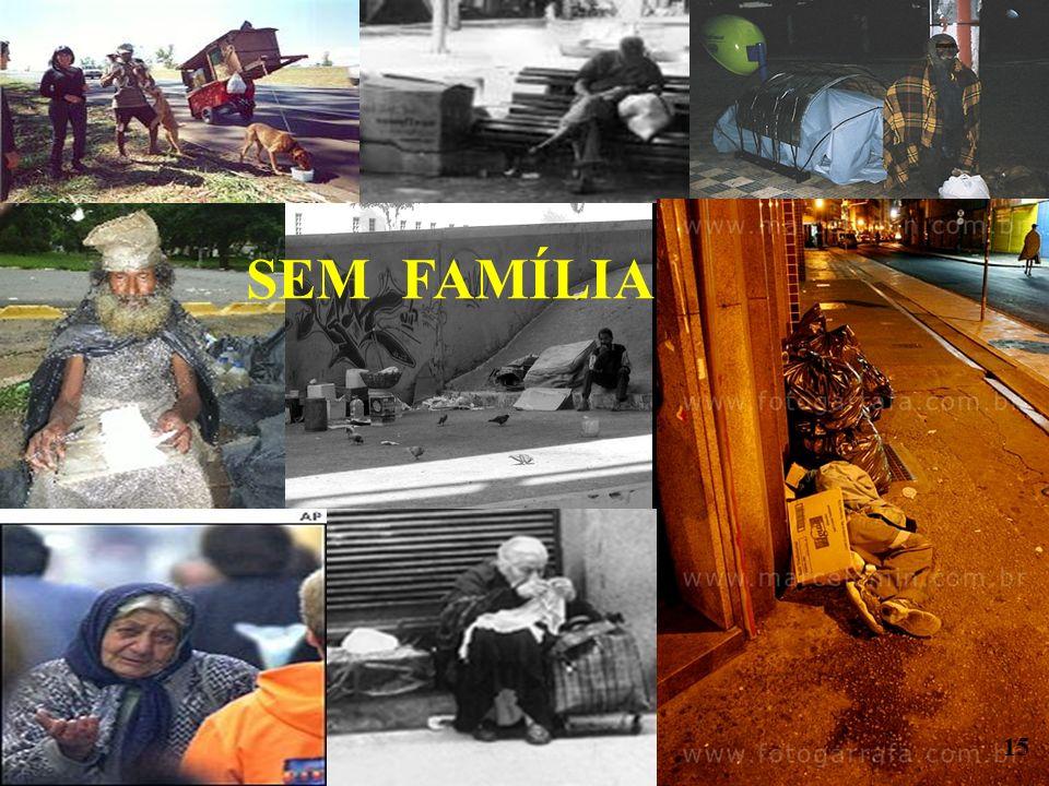 SEM FAMÍLIA 15