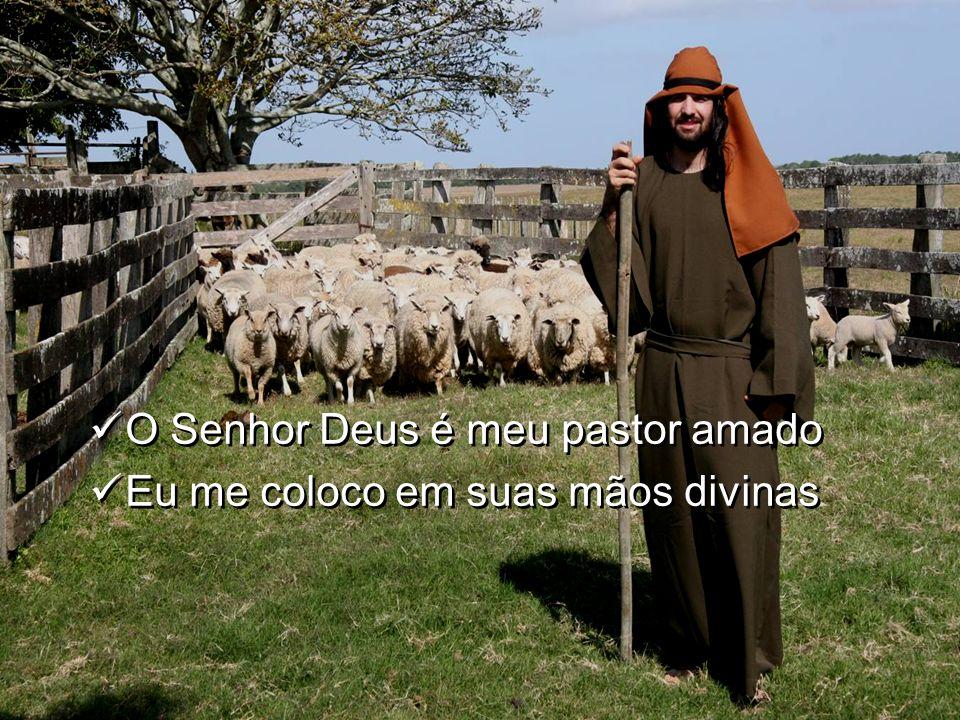O Senhor Deus é meu pastor amado