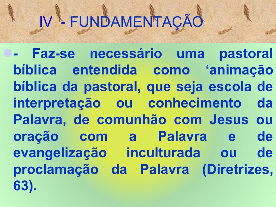 IV - FUNDAMENTAÇÃO