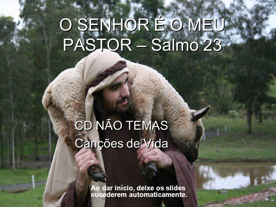 O SENHOR É O MEU PASTOR – Salmo 23