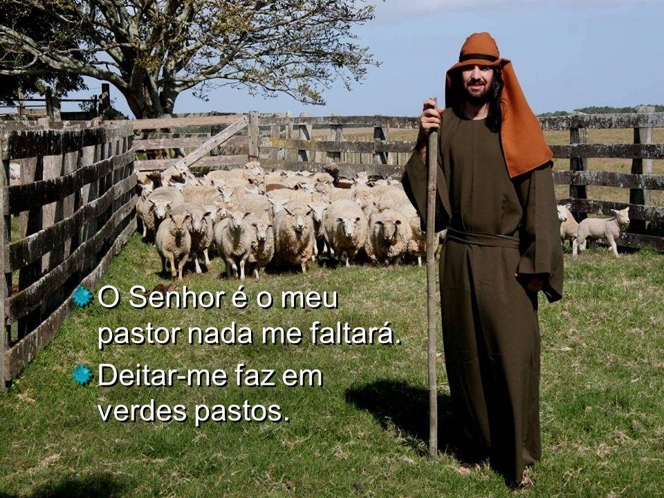 O Senhor é o meu pastor nada me faltará.
