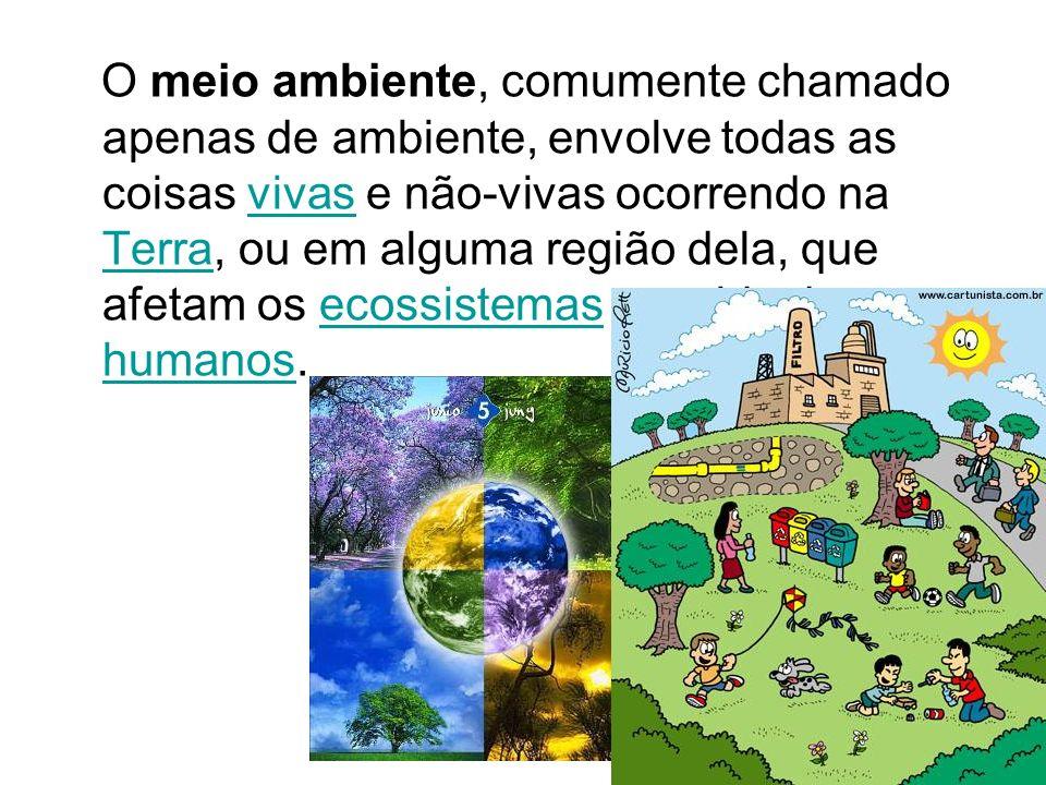 O meio ambiente, comumente chamado apenas de ambiente, envolve todas as coisas vivas e não-vivas ocorrendo na Terra, ou em alguma região dela, que afetam os ecossistemas e a vida dos humanos.