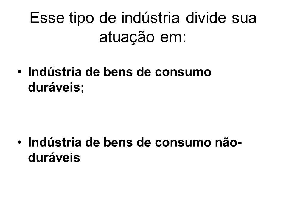 Esse tipo de indústria divide sua atuação em: