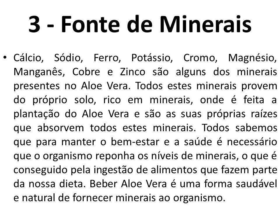 3 - Fonte de Minerais