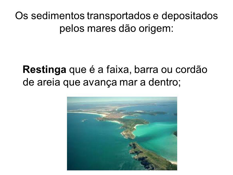 Os sedimentos transportados e depositados pelos mares dão origem: