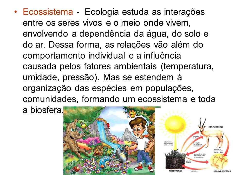 Ecossistema - Ecologia estuda as interações entre os seres vivos e o meio onde vivem, envolvendo a dependência da água, do solo e do ar.
