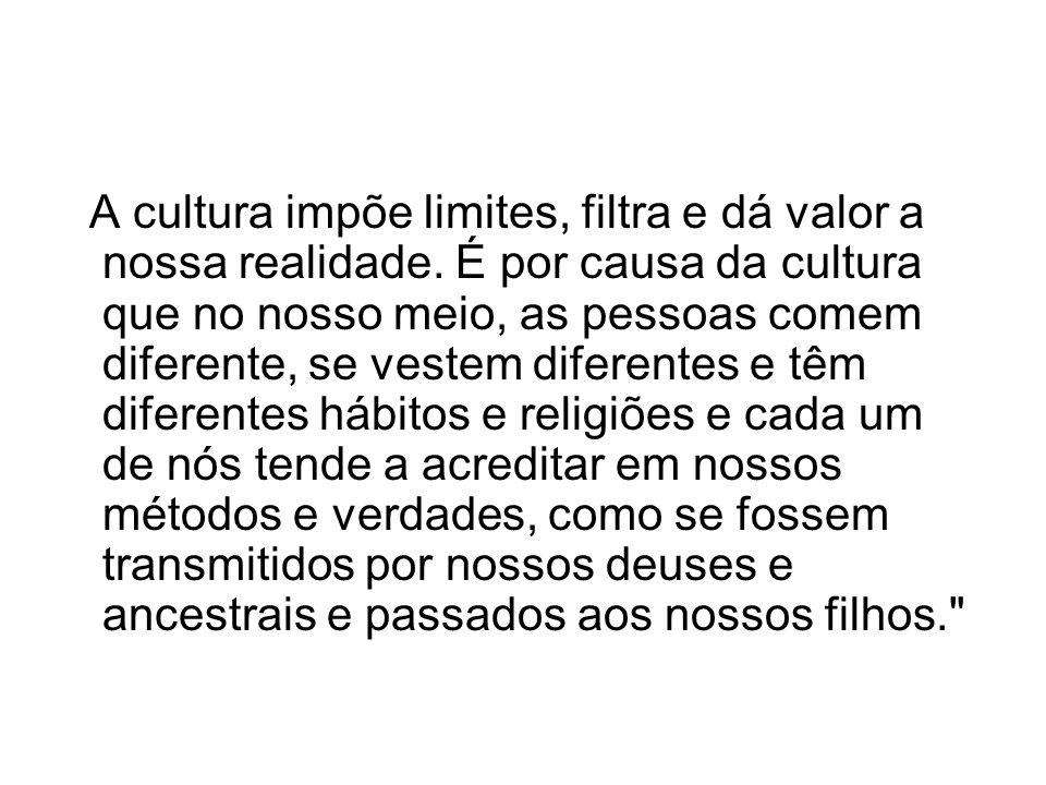 A cultura impõe limites, filtra e dá valor a nossa realidade