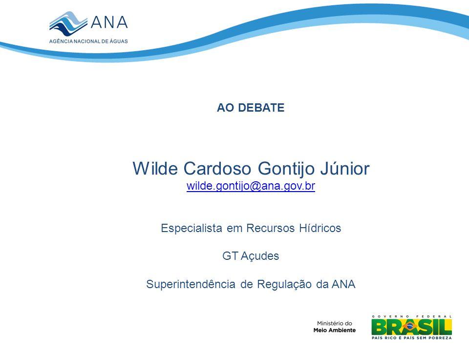 Wilde Cardoso Gontijo Júnior