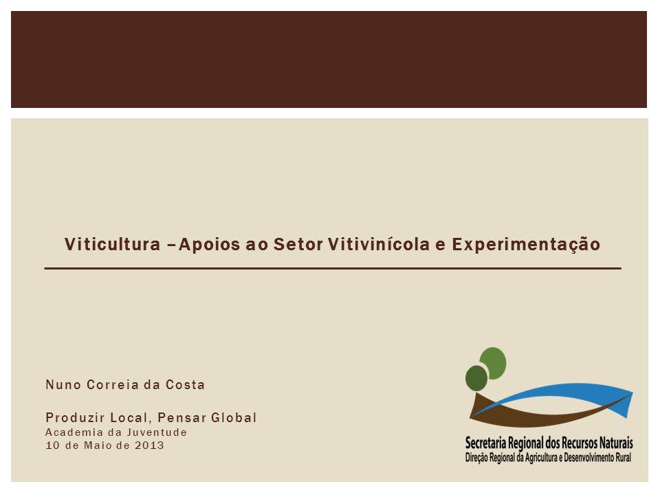 Viticultura –Apoios ao Setor Vitivinícola e Experimentação