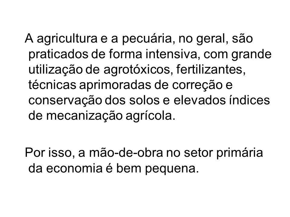 A agricultura e a pecuária, no geral, são praticados de forma intensiva, com grande utilização de agrotóxicos, fertilizantes, técnicas aprimoradas de correção e conservação dos solos e elevados índices de mecanização agrícola.