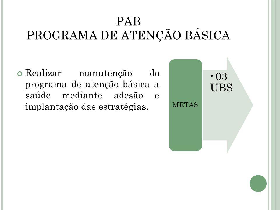 PAB PROGRAMA DE ATENÇÃO BÁSICA
