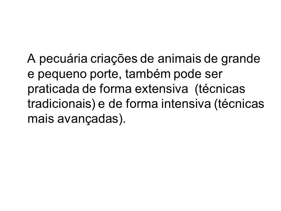 A pecuária criações de animais de grande e pequeno porte, também pode ser praticada de forma extensiva (técnicas tradicionais) e de forma intensiva (técnicas mais avançadas).