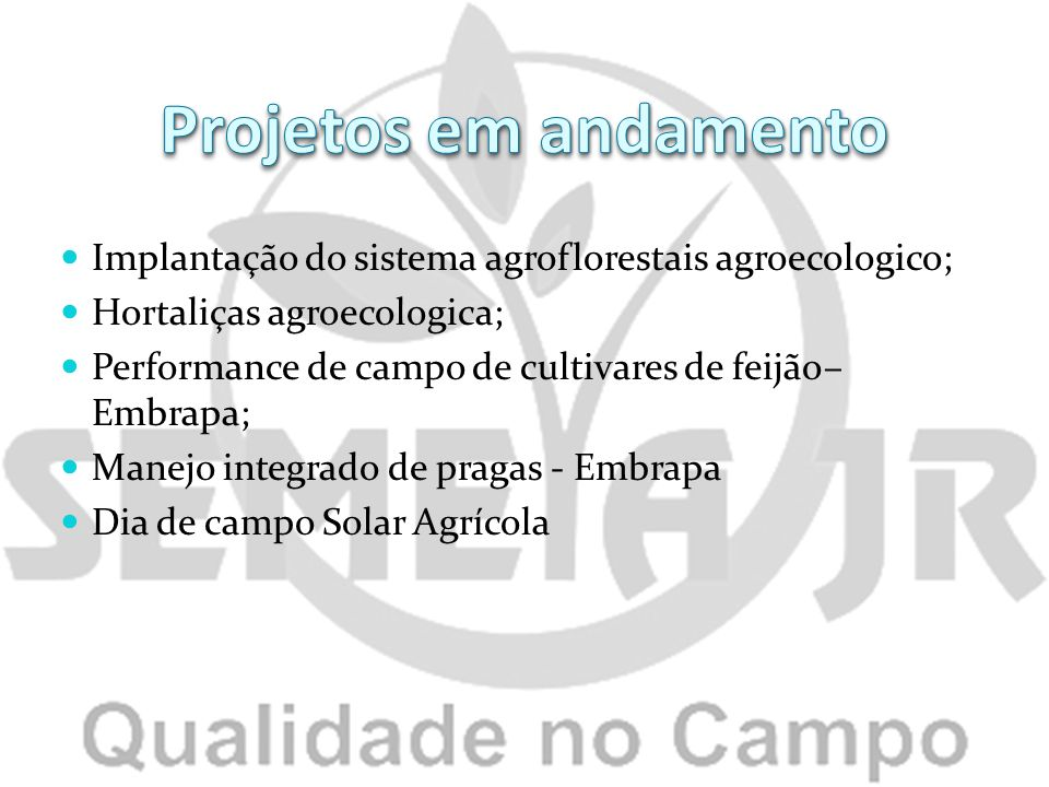 Projetos em andamento Implantação do sistema agroflorestais agroecologico; Hortaliças agroecologica;