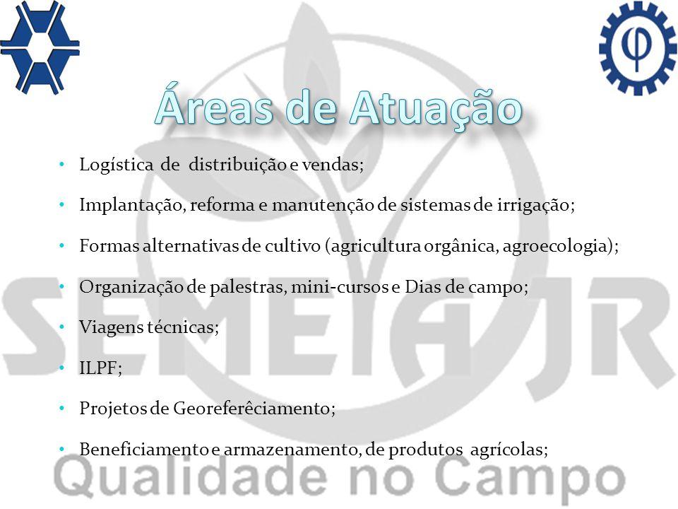 Áreas de Atuação Logística de distribuição e vendas;