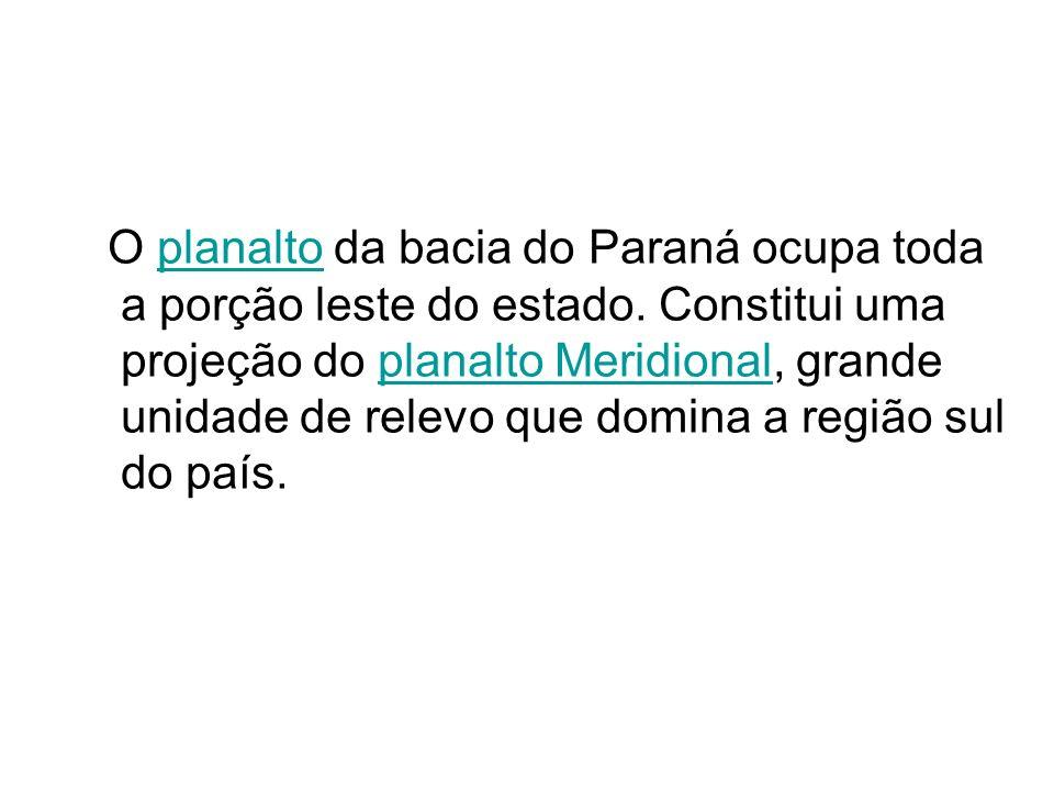 O planalto da bacia do Paraná ocupa toda a porção leste do estado