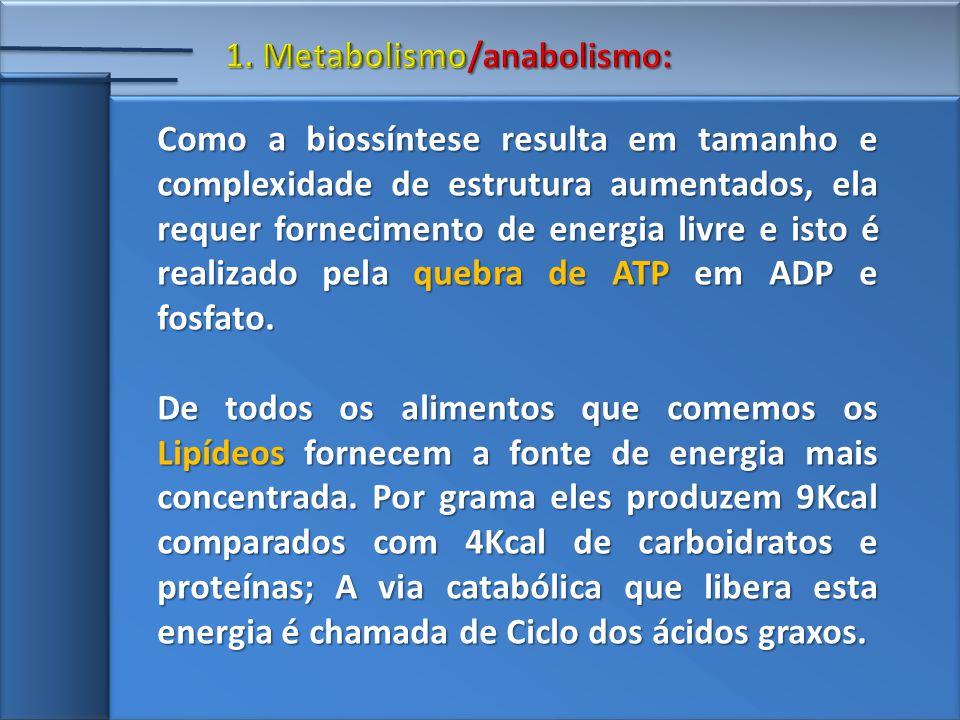 1. Metabolismo/anabolismo: