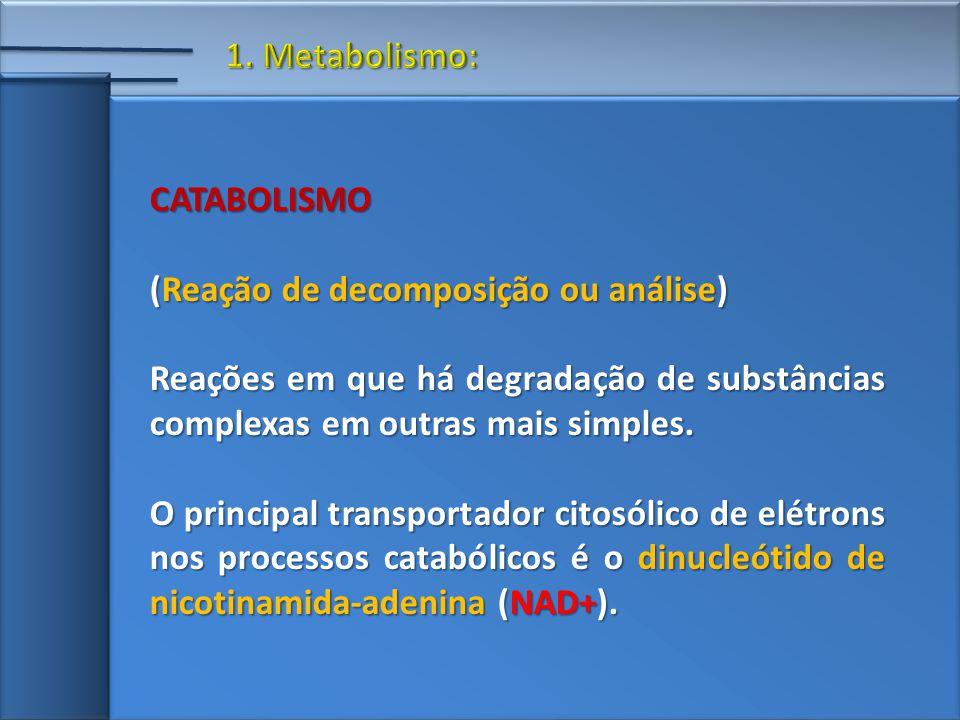 1. Metabolismo: CATABOLISMO. (Reação de decomposição ou análise) Reações em que há degradação de substâncias complexas em outras mais simples.