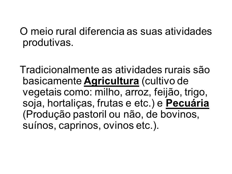 O meio rural diferencia as suas atividades produtivas.