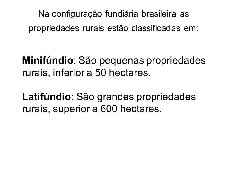 Na configuração fundiária brasileira as propriedades rurais estão classificadas em: