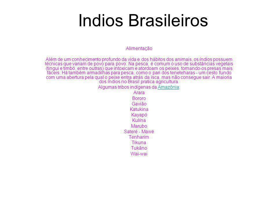 Algumas tribos indígenas da Amazônia: