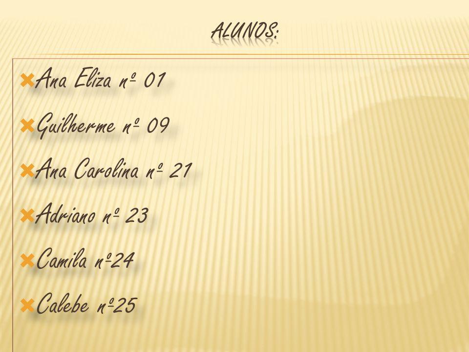Ana Eliza nº 01 Guilherme nº 09 Ana Carolina nº 21 Adriano nº 23
