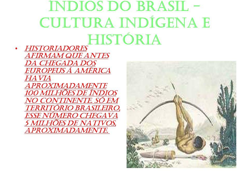 ÍNDIOS DO BRASIL - CULTURA INDÍGENA E HISTÓRIA