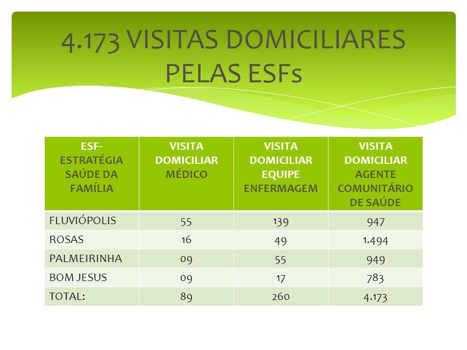 4.173 VISITAS DOMICILIARES PELAS ESFs