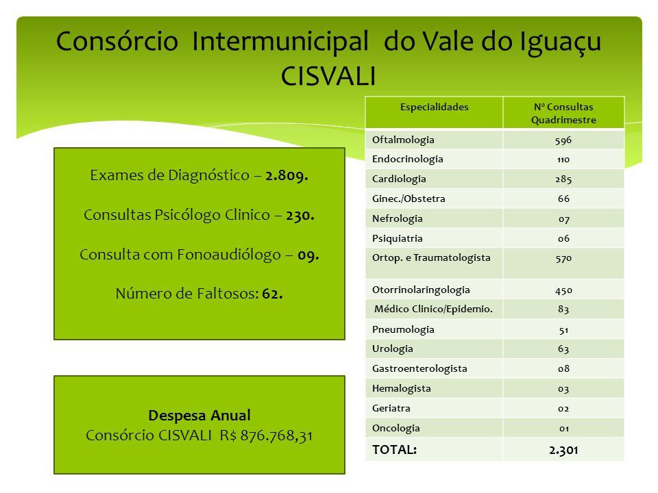 Consórcio Intermunicipal do Vale do Iguaçu CISVALI