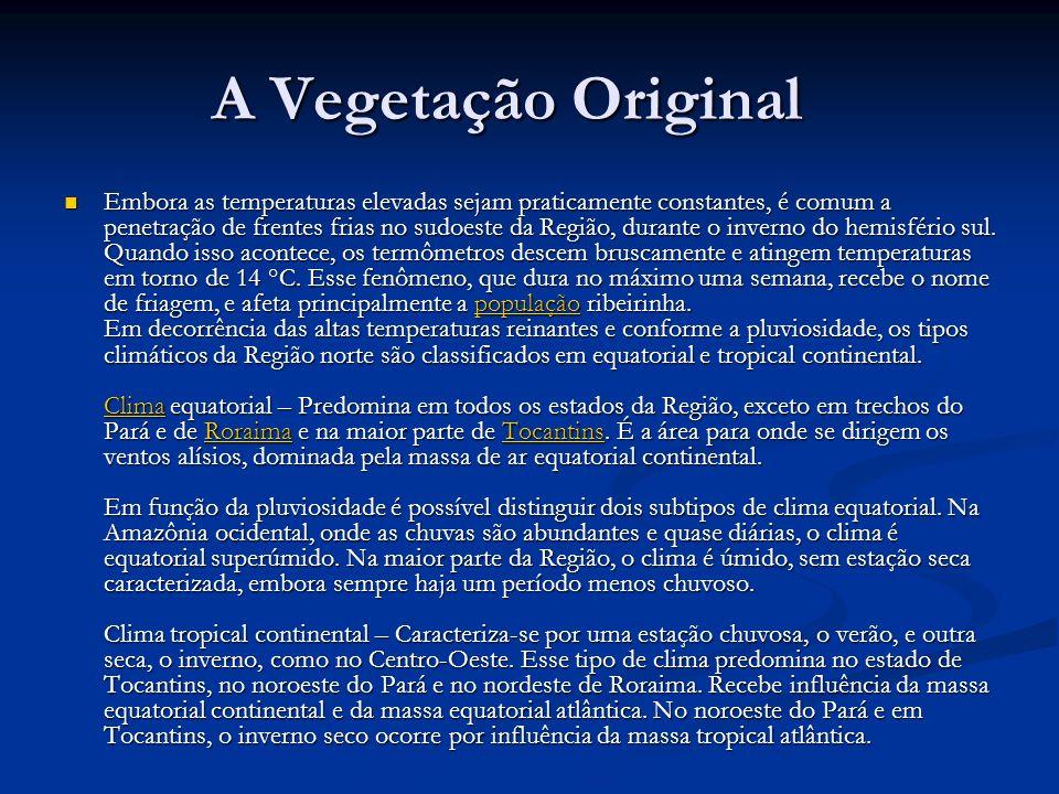 A Vegetação Original
