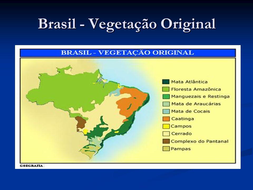 Brasil - Vegetação Original