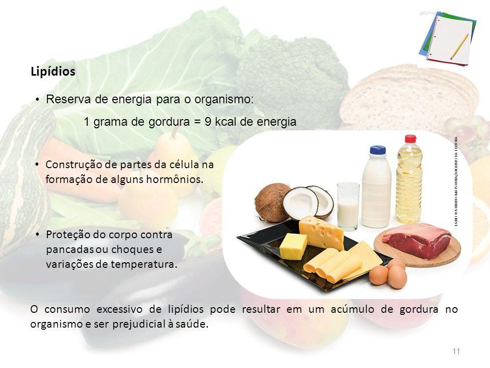 Lipídios Reserva de energia para o organismo: