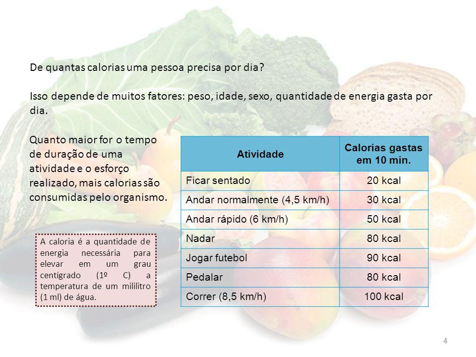 De quantas calorias uma pessoa precisa por dia