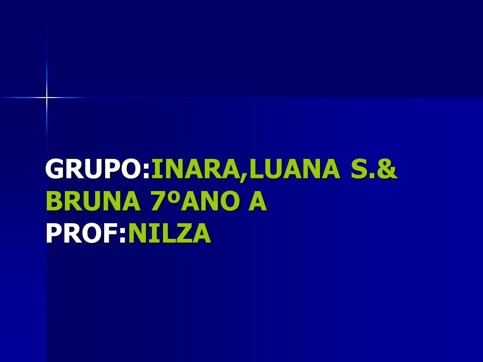 GRUPO:INARA,LUANA S.& BRUNA 7ºANO A PROF:NILZA