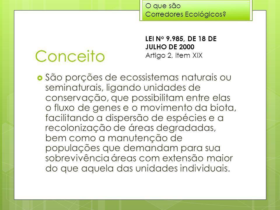 O que são Corredores Ecológicos Conceito. LEI No 9.985, DE 18 DE JULHO DE 2000 Artigo 2, Item XIX.