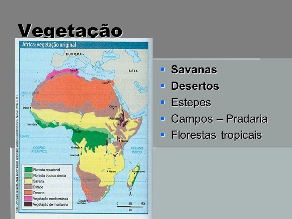 Vegetação Savanas Desertos Estepes Campos – Pradaria