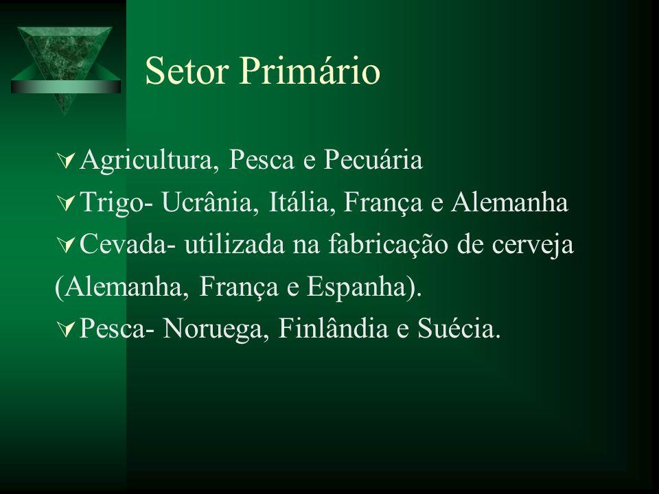 Setor Primário Agricultura, Pesca e Pecuária