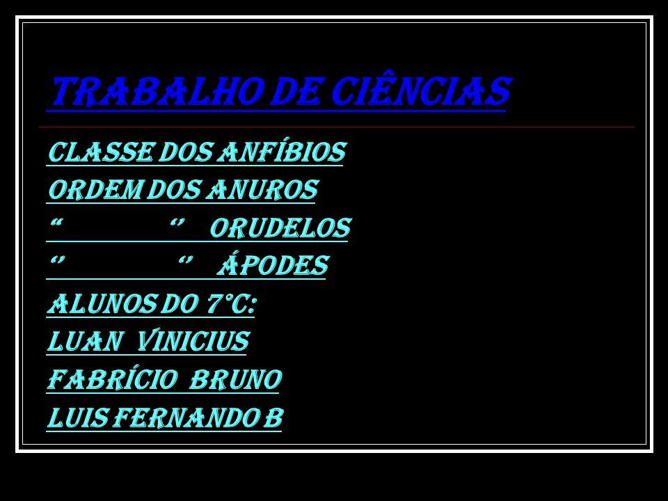TRABALHO DE CIÊNCIAS CLASSE DOS ANFÍBIOS ORDEM DOS ANUROS
