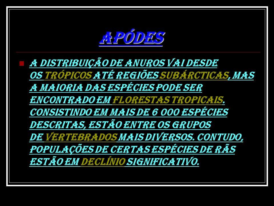 APÓDES