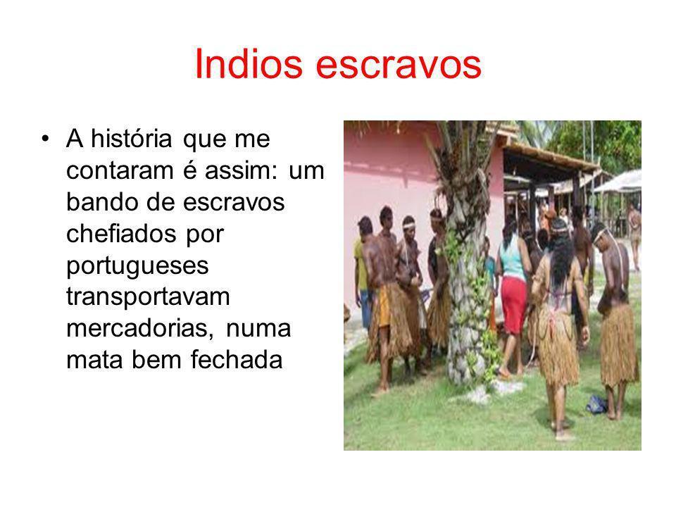 Indios escravos A história que me contaram é assim: um bando de escravos chefiados por portugueses transportavam mercadorias, numa mata bem fechada.