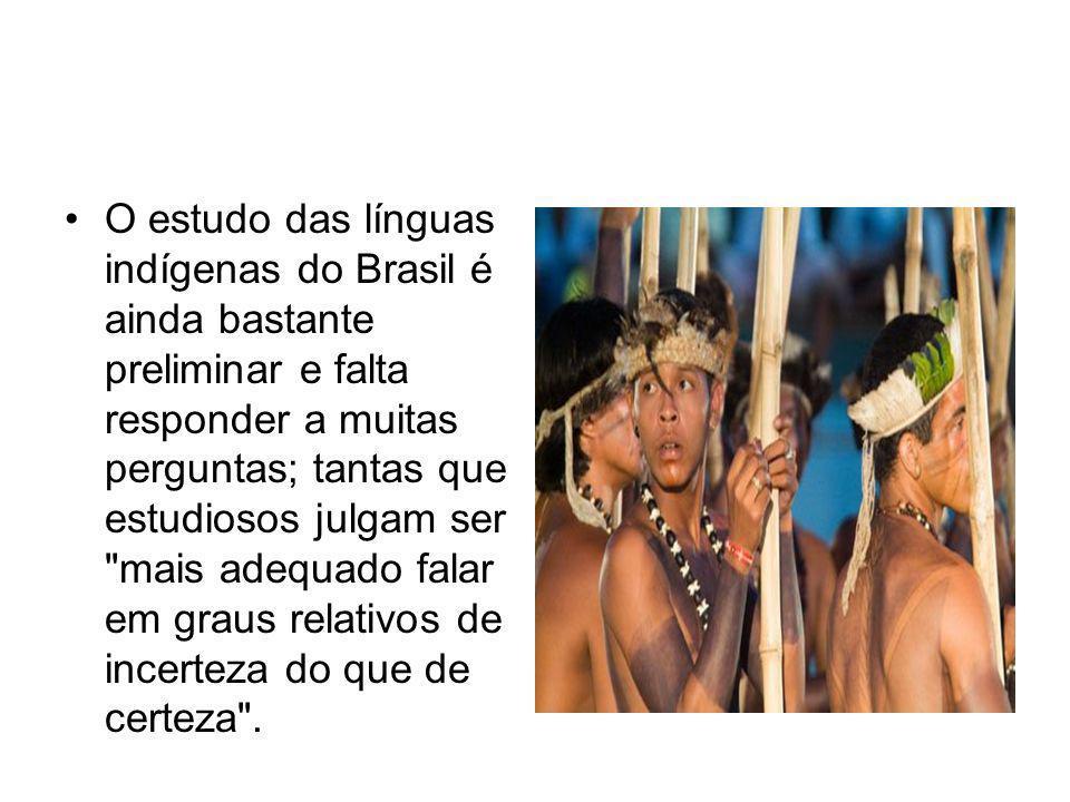 O estudo das línguas indígenas do Brasil é ainda bastante preliminar e falta responder a muitas perguntas; tantas que estudiosos julgam ser mais adequado falar em graus relativos de incerteza do que de certeza .