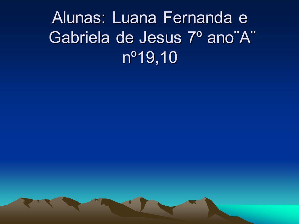 Alunas: Luana Fernanda e Gabriela de Jesus 7º ano¨A¨ nº19,10