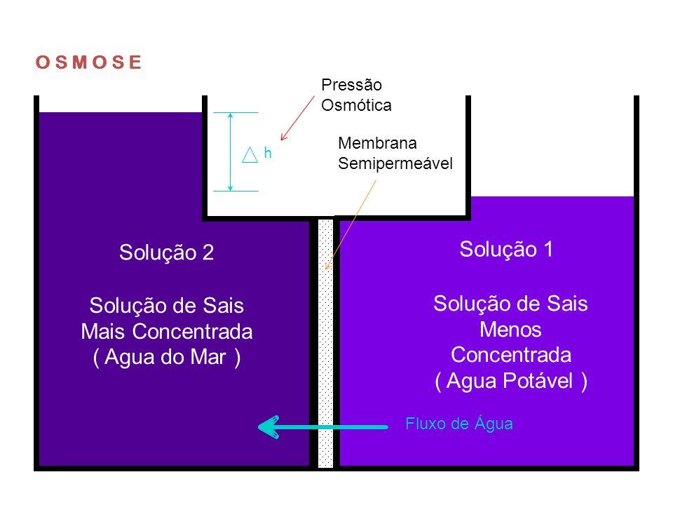 Solução de Sais Mais Concentrada ( Agua do Mar )