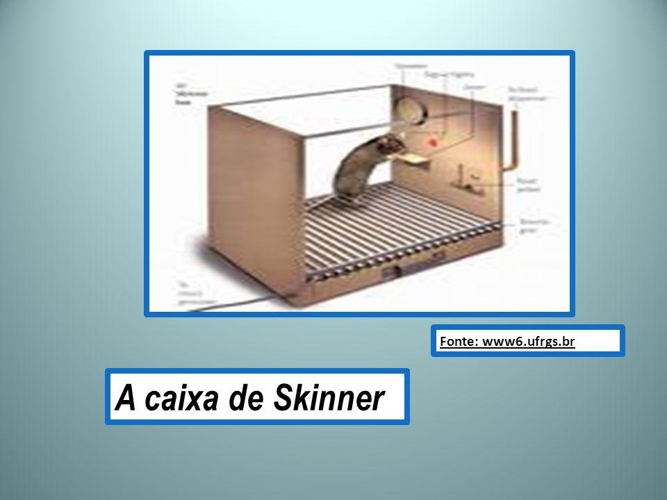 Fonte: www6.ufrgs.br A caixa de Skinner