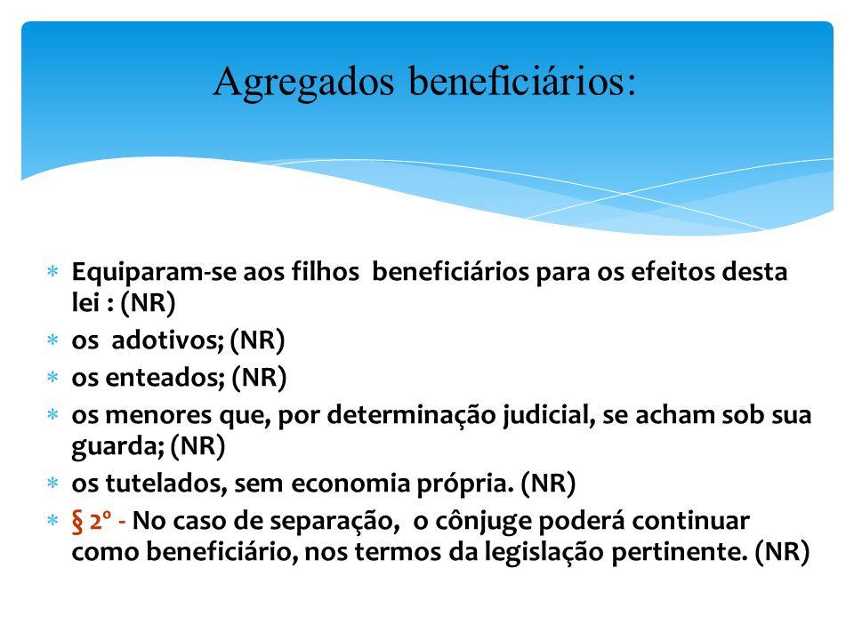 Agregados beneficiários: