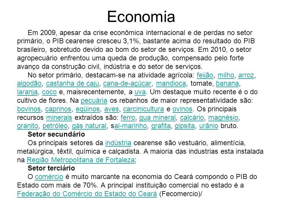 Economia Em 2009, apesar da crise econômica internacional e de perdas no setor.